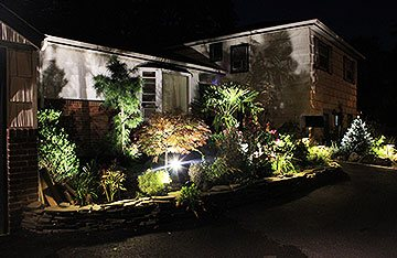 landscape lighting design in East Norwich 11732