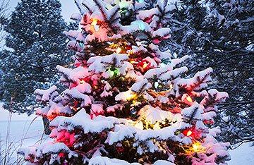 Long Island Christmas Light Installation Holiday Lighting